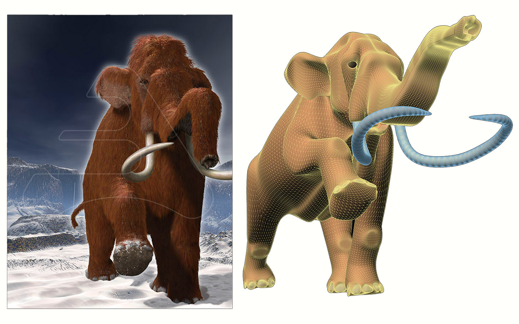 Mammoth / MC publishers / 3D Modelling and Illustration