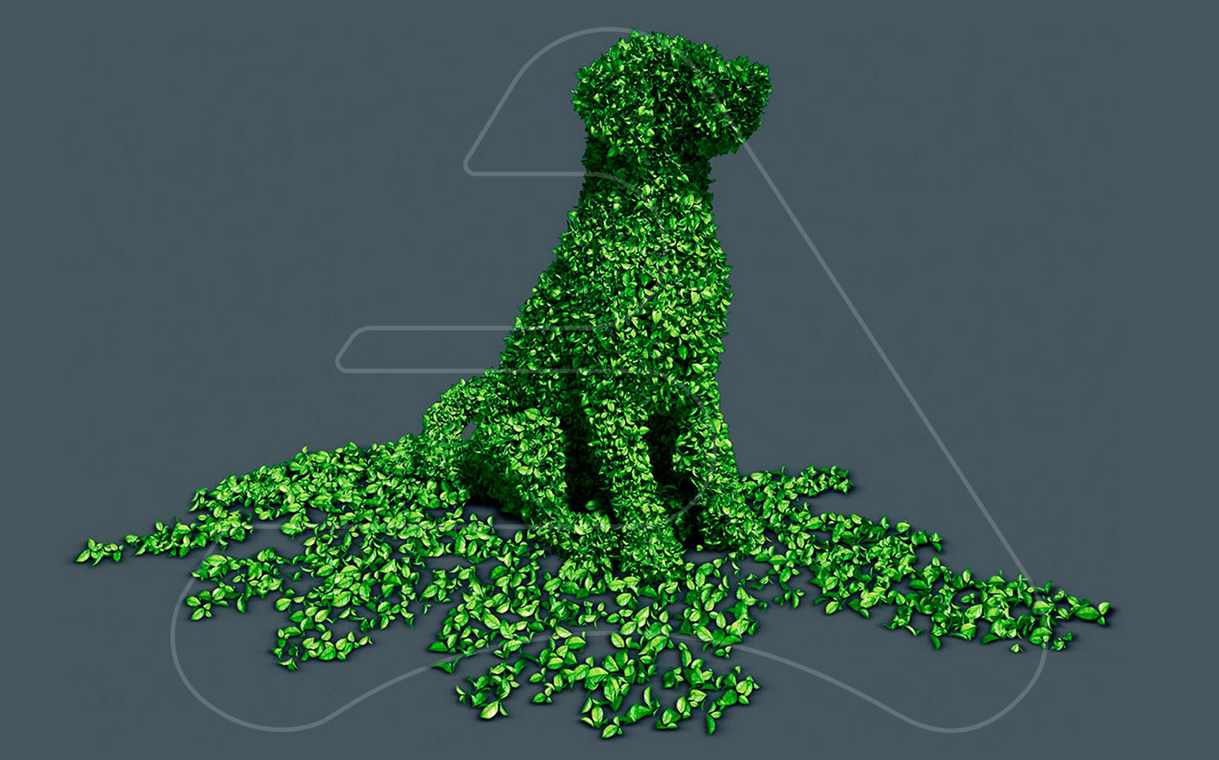 Shrub dog /  Leroy Merlin / Tapsa Madrid / 3D modeling and illustration